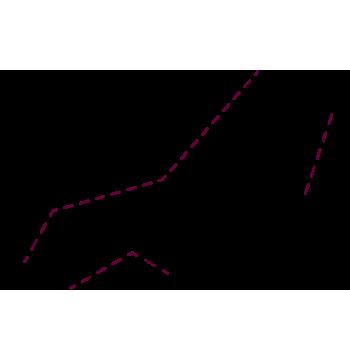 vector-detalles-basic-1-1
