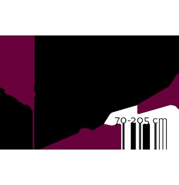 vector-detalles-basic-3-1
