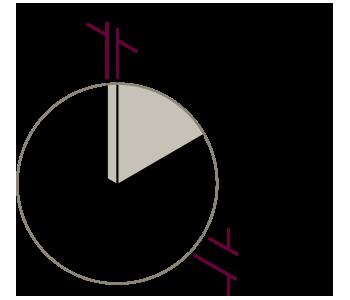 vector-detalles-basic-5-2