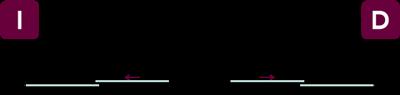 vector-dn2