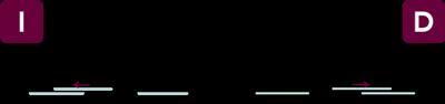 vector-dn3