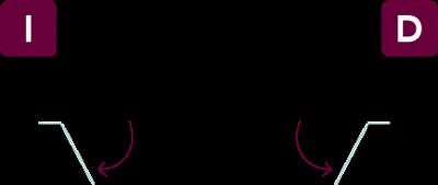 vector-fl2