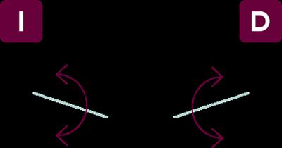 vector-hn2