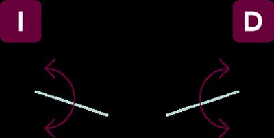 vector-nv1