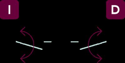 vector-nv2f