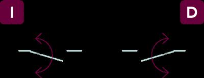vector-nv3