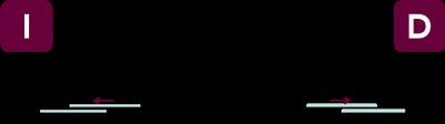 vector-nx2