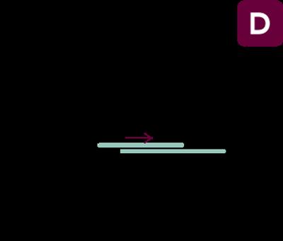 vector-sd2v-d