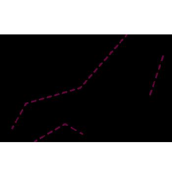 vector-detalles-estandard-1-1