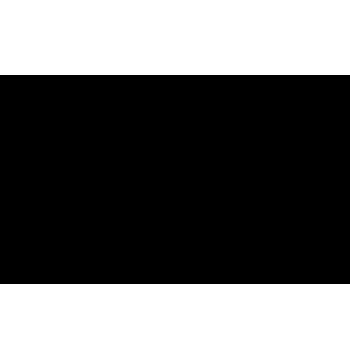 vector-detalles-estandard-2-1