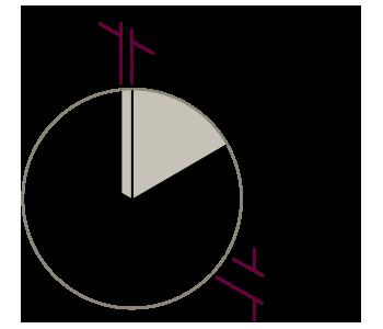 vector-detalles-estandard-4-2