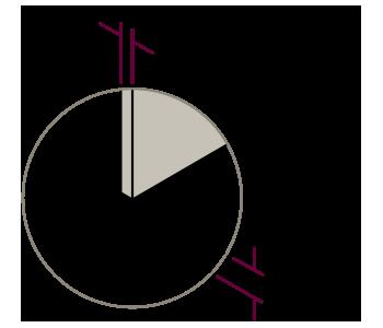 vector-detalles-fine-4-2