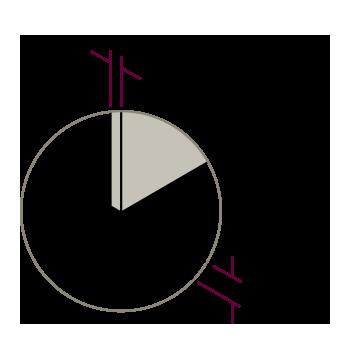 vector-detalles-hole-4-2